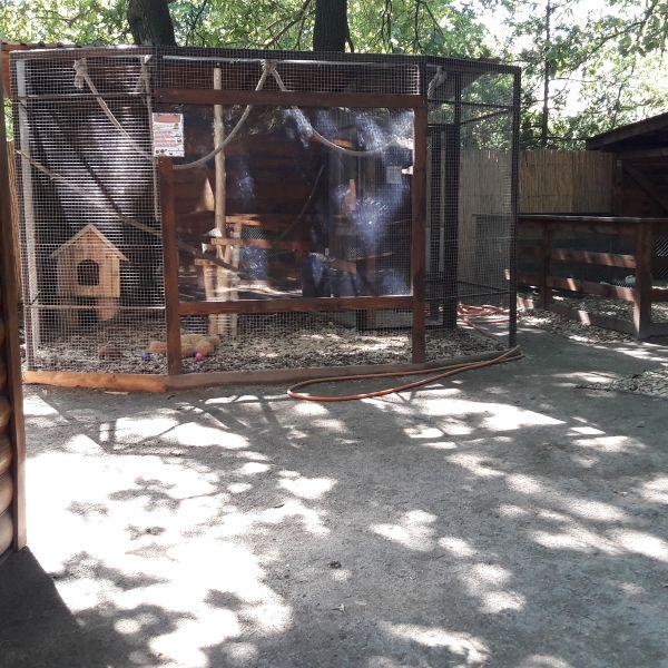 Animalpark будівництво зоопарку